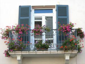 balkon kwiaty