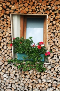 1361534_wood_window
